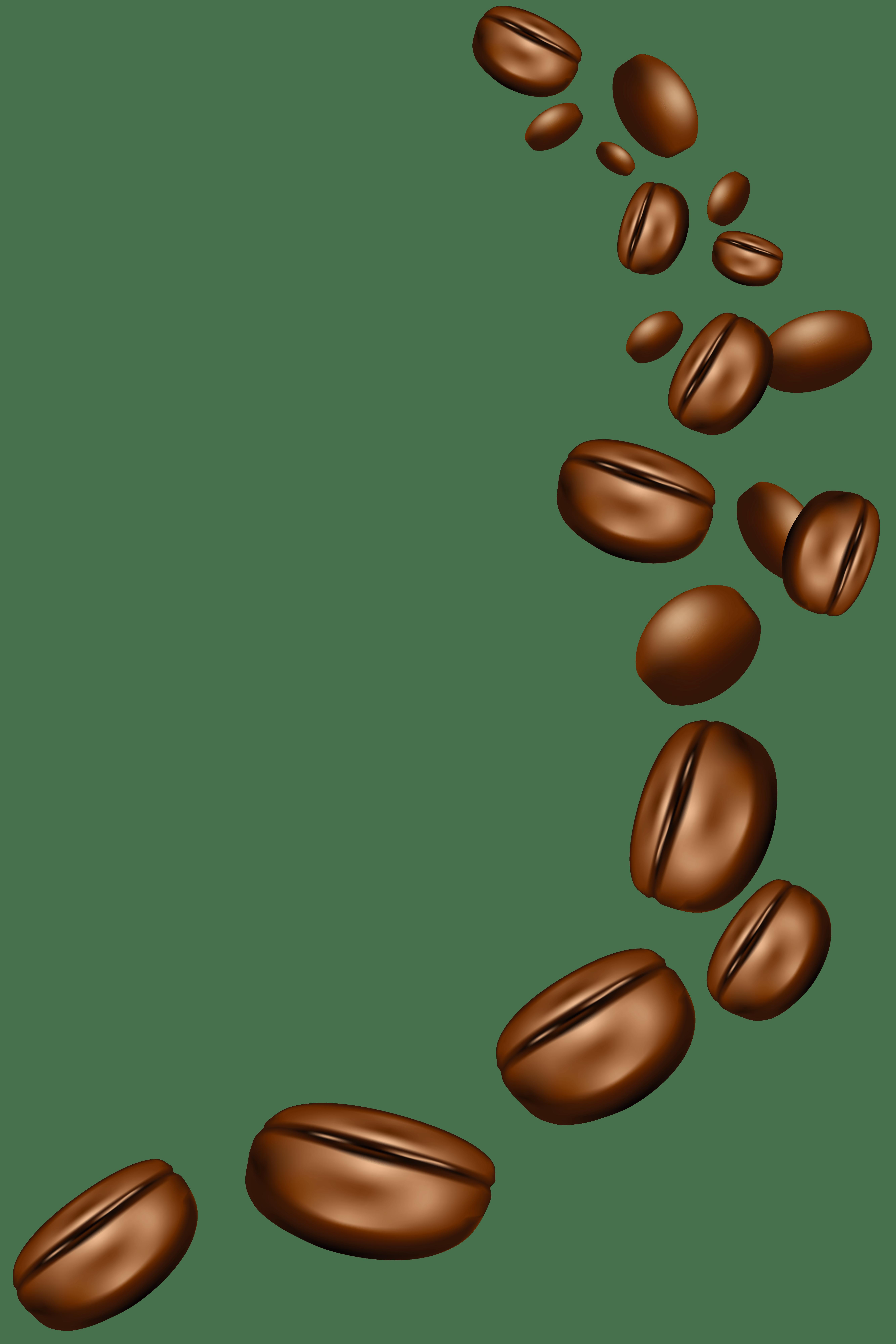 Vector Biji Kopi : vector, Coffee, Cliparts,, Download, Clipart, Library