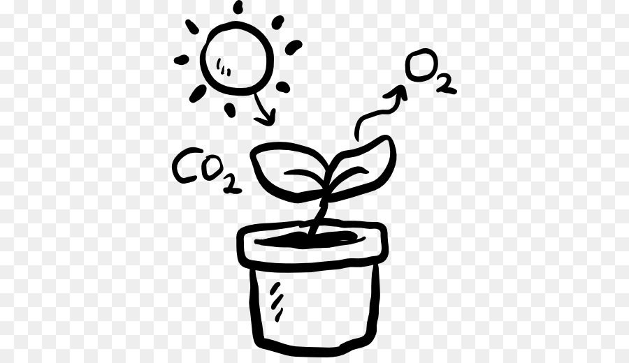 Free Photosynthesis Cliparts, Download Free Clip Art, Free
