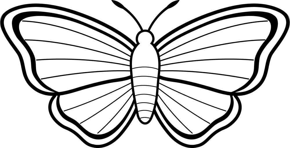 medium resolution of clipart butterfly outline free clipart images 3 cliparting