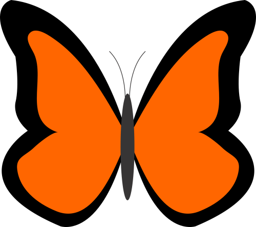 small resolution of bug clipart orange butterfly pencil and in color bug clipart