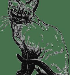 cat [ 1839 x 2400 Pixel ]