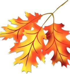 leaf fall leaves clipart free clipart images [ 3300 x 2854 Pixel ]