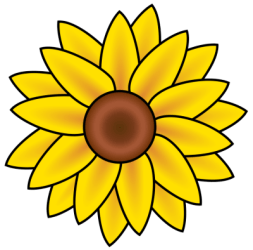 outline sunflower drawing easy Clip Art Library