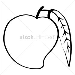 Free Mango Clipart Download Free Clip Art Free Clip Art on Clipart Library
