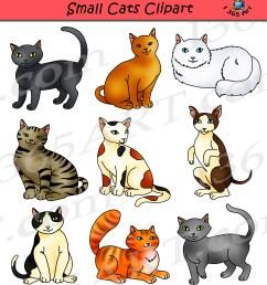 cat clipart image [ 1800 x 1968 Pixel ]