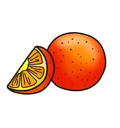orange clipart [ 1800 x 1800 Pixel ]
