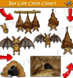 clipart bat [ 5000 x 5040 Pixel ]