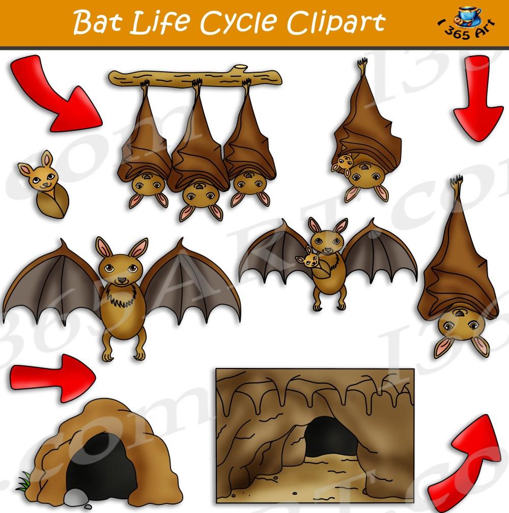medium resolution of clipart bat