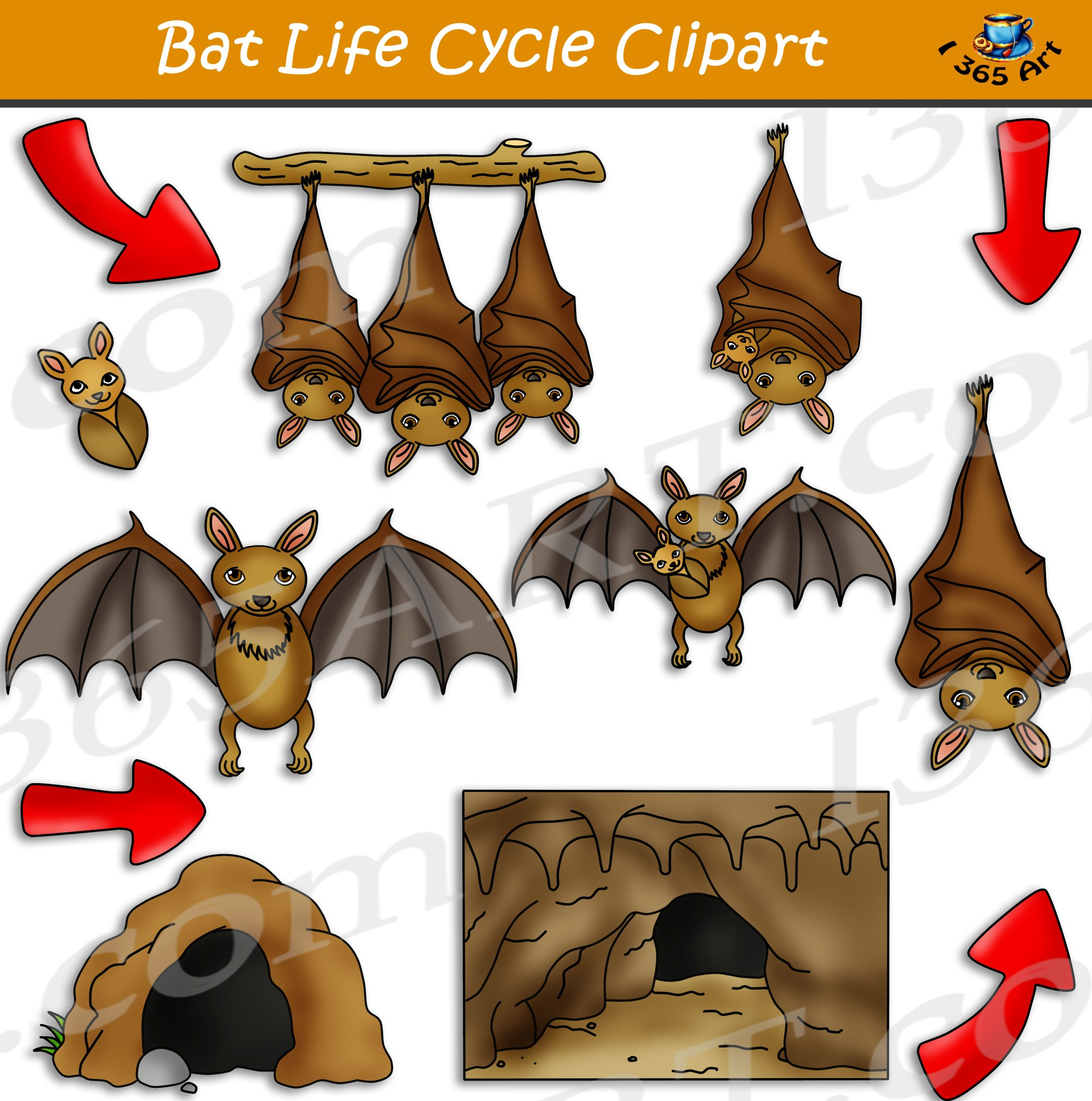 hight resolution of clipart bat