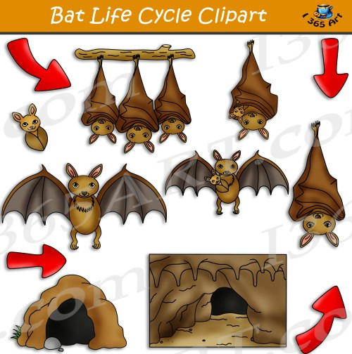 small resolution of clipart bat