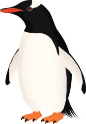 penguin gentoo clipart adelie clip cliparts vector library drawings illustrations emperor