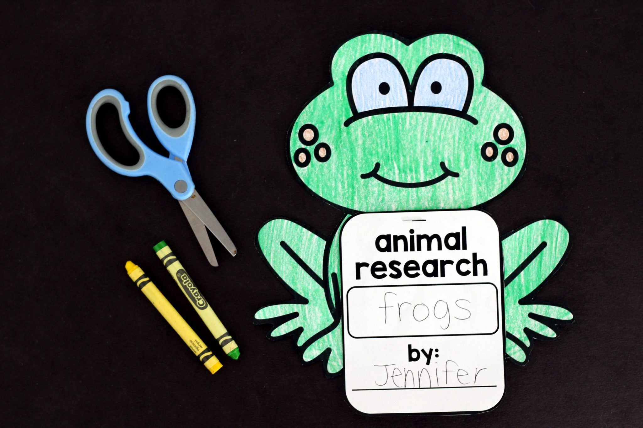 Library Of Animal Research Project Kindergarten Banner