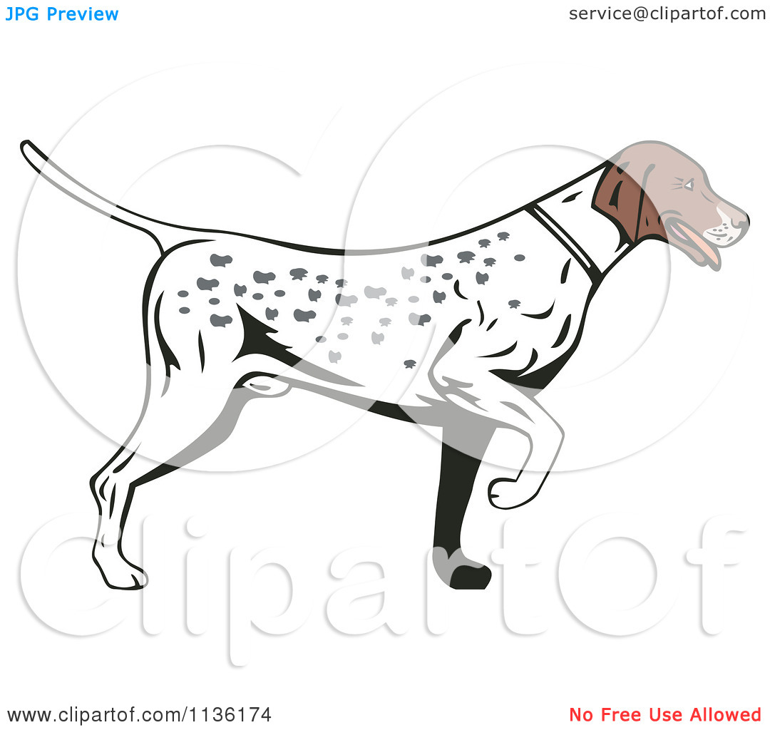 Library Of Royalty Free Library Pointer Dog Files