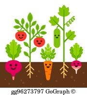 Library of vegetable field picture library stock png files