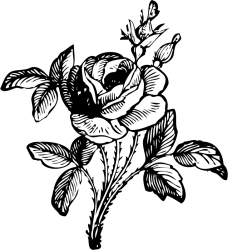 Library of flower svg black and white stock black and