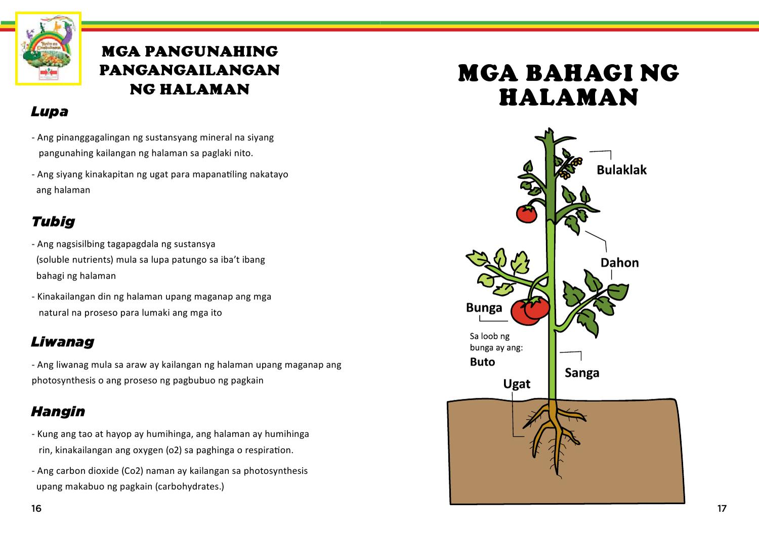 Library Of Mga Bahagi Ng Halaman Svg Download Files