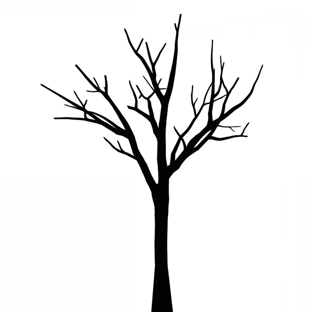 Library Of Tree With No Leaves Clip Freeuse Download Black