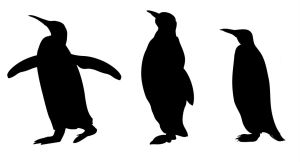 silhouette animal silhouettes simple clip patterns penguin animals clipart cliparts printable shadow finger middle heart craft clipartbest designs shapes library