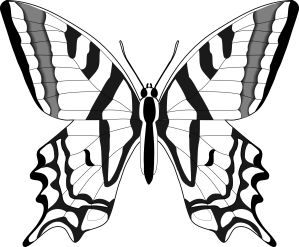 butterfly line clipart clipartbest svg clip flower