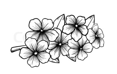 Japanese Cherry Blossom Coloring Pages Memes GFT Coloring • #66920 ClipArt Best ClipArt Best