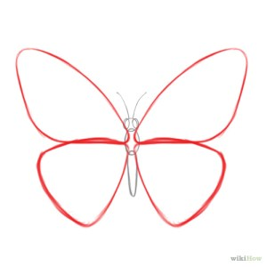 butterfly draw easy butterflies drawing simple drawings sketch steps step wikihow cartoon butter sketches tips vlinder tekenen vlinders een tekeningen