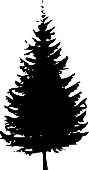 silhouette tree simple clip vector clipart designs pine cedar trees drawing evergreen cliparts forest svg silhouettes trunk tattoo computer