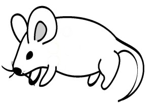 line animals drawings simple clip cliparts clipart