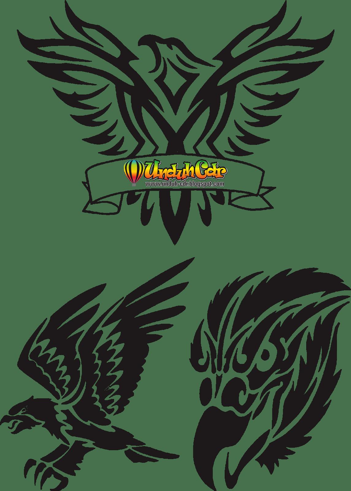 Burung Elang Vector : burung, elang, vector, Gambar, Elang, ClipArt