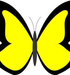 butterfly clipart free clipart images 5 [ 999 x 888 Pixel ]