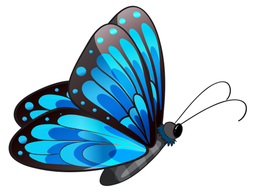 small resolution of butterfly clipart image 2571