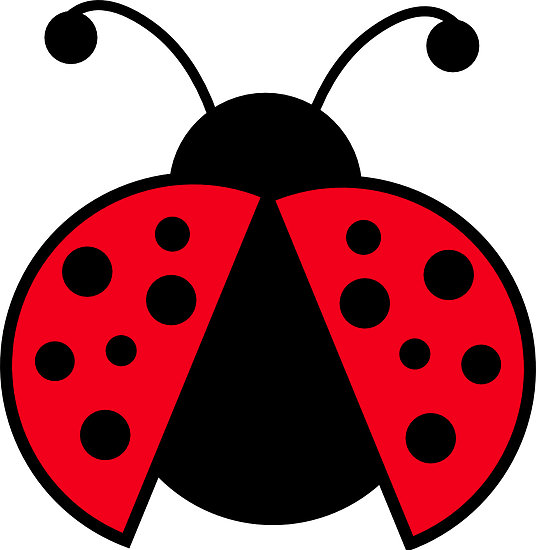 ladybug clip art black and white