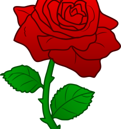 clipart flower rose free clipart images [ 4481 x 5947 Pixel ]