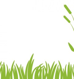 green grass clipart free stock photo public domain pictures 2 [ 1920 x 1425 Pixel ]