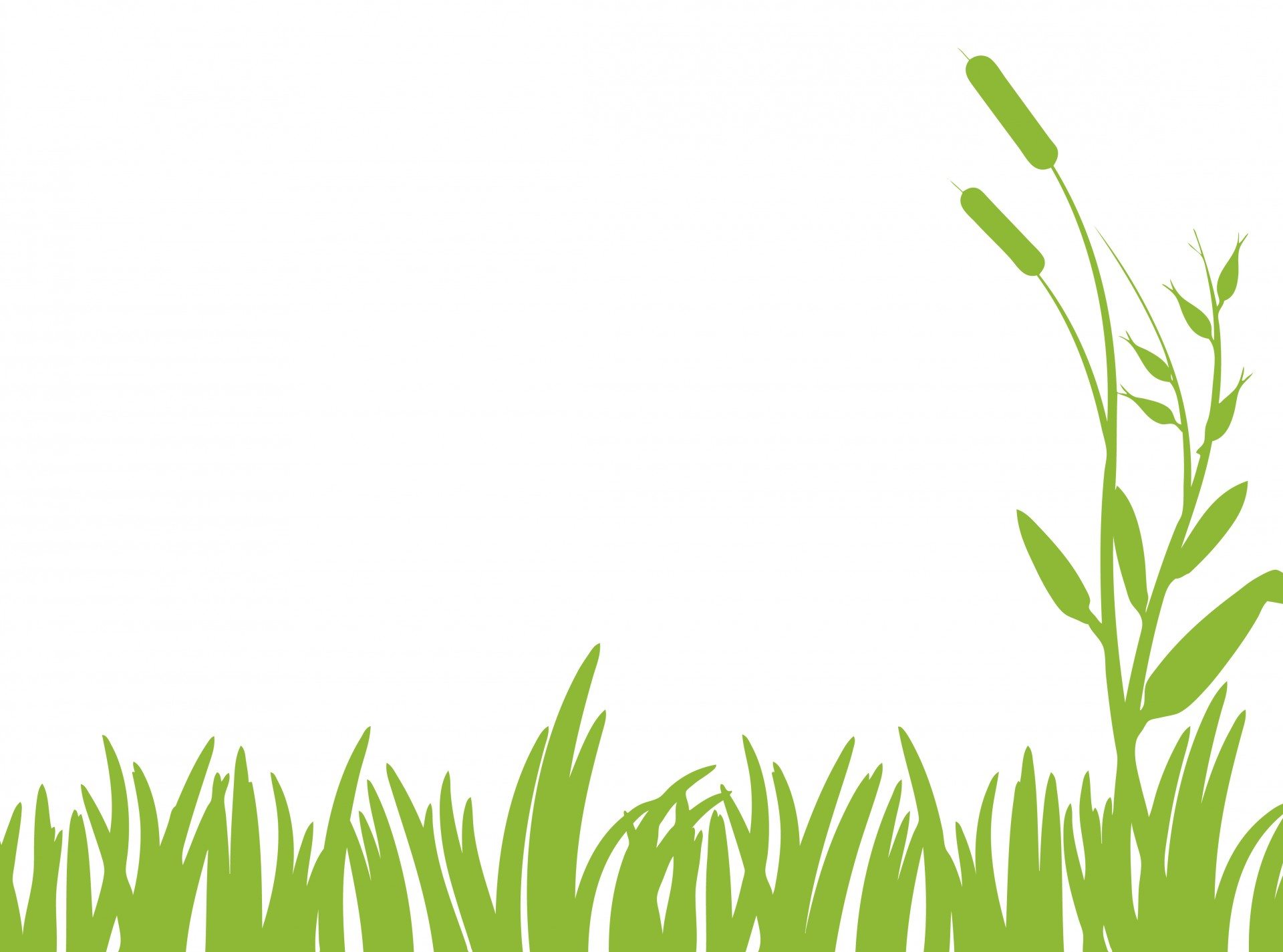 hight resolution of green grass clipart free stock photo public domain pictures 2