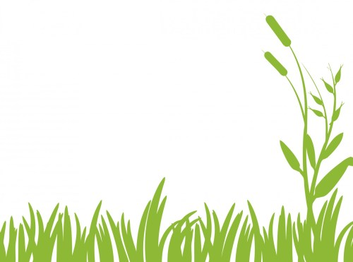 small resolution of green grass clipart free stock photo public domain pictures 2