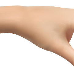 human hand clipart picture [ 2547 x 1078 Pixel ]