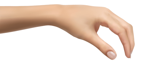 small resolution of human hand clipart picture