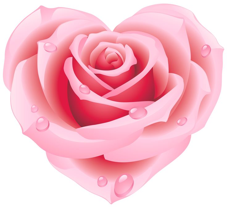Image result for free clipart rose