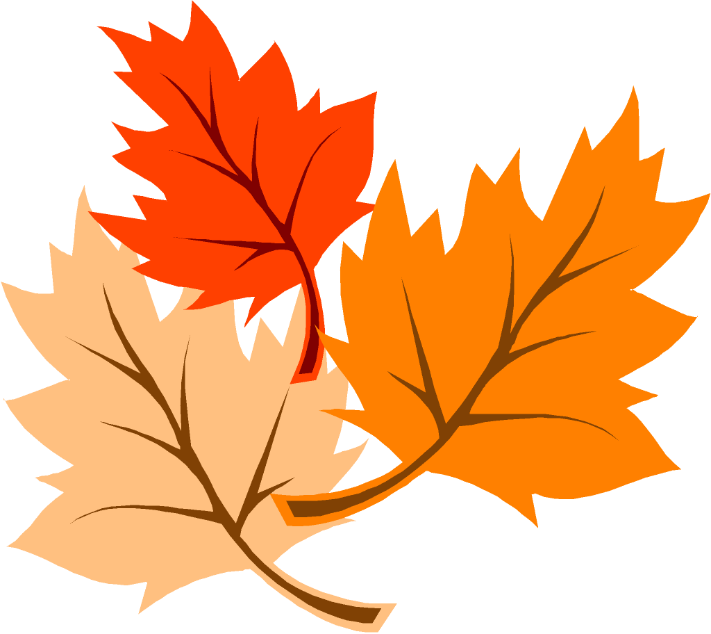 hight resolution of fall leaves clip art image 6244