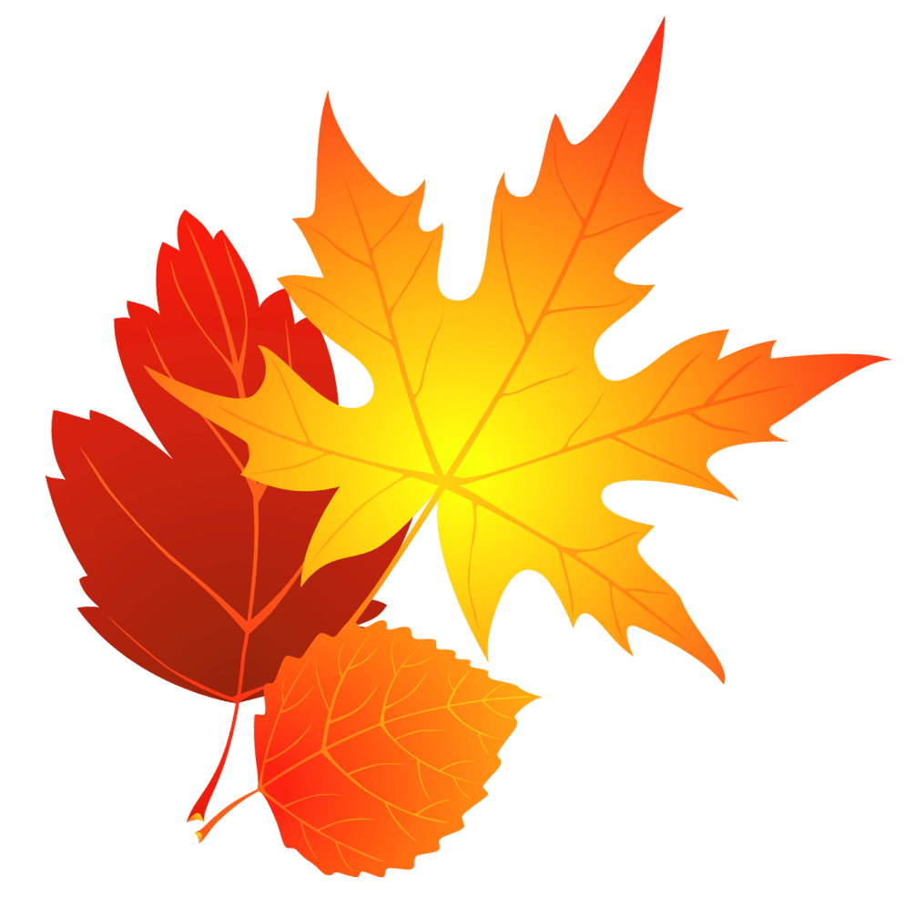 hight resolution of fall leaves clip art image 6226