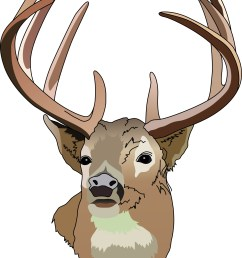 deer hunting clipart free clipart images [ 2457 x 3305 Pixel ]