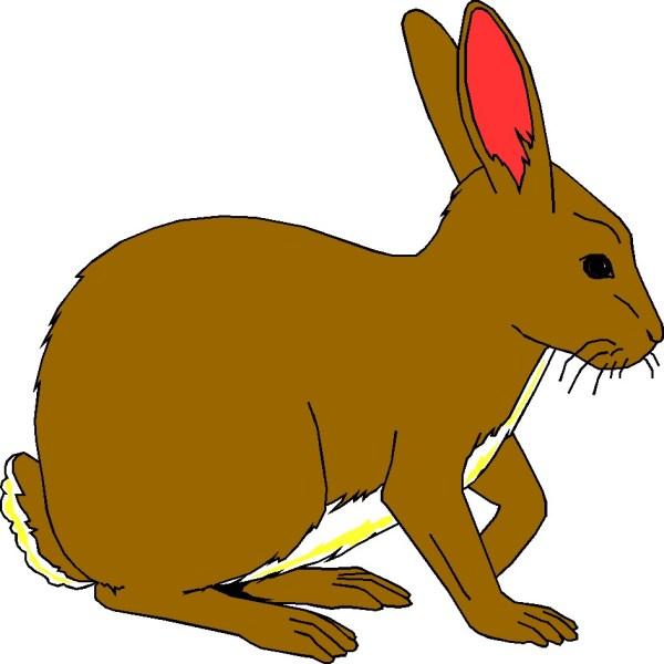 rabbit clip art free clipart