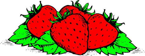 strawberry basket clipart