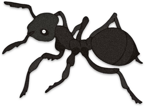 free ant clipart black