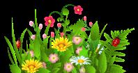 Garden clip art border free clipart images clipartix 2 ...