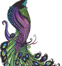 animals clipart peacock gallery free images [ 842 x 1429 Pixel ]