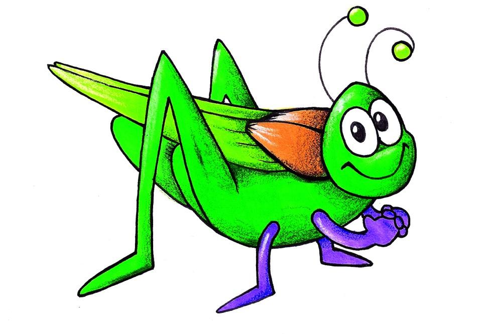 medium resolution of cricket bug clipart