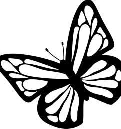 butterfly black and white clipart download free images in png [ 981 x 968 Pixel ]