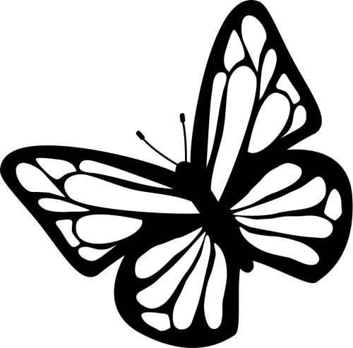 small resolution of butterfly black and white clipart download free images in png