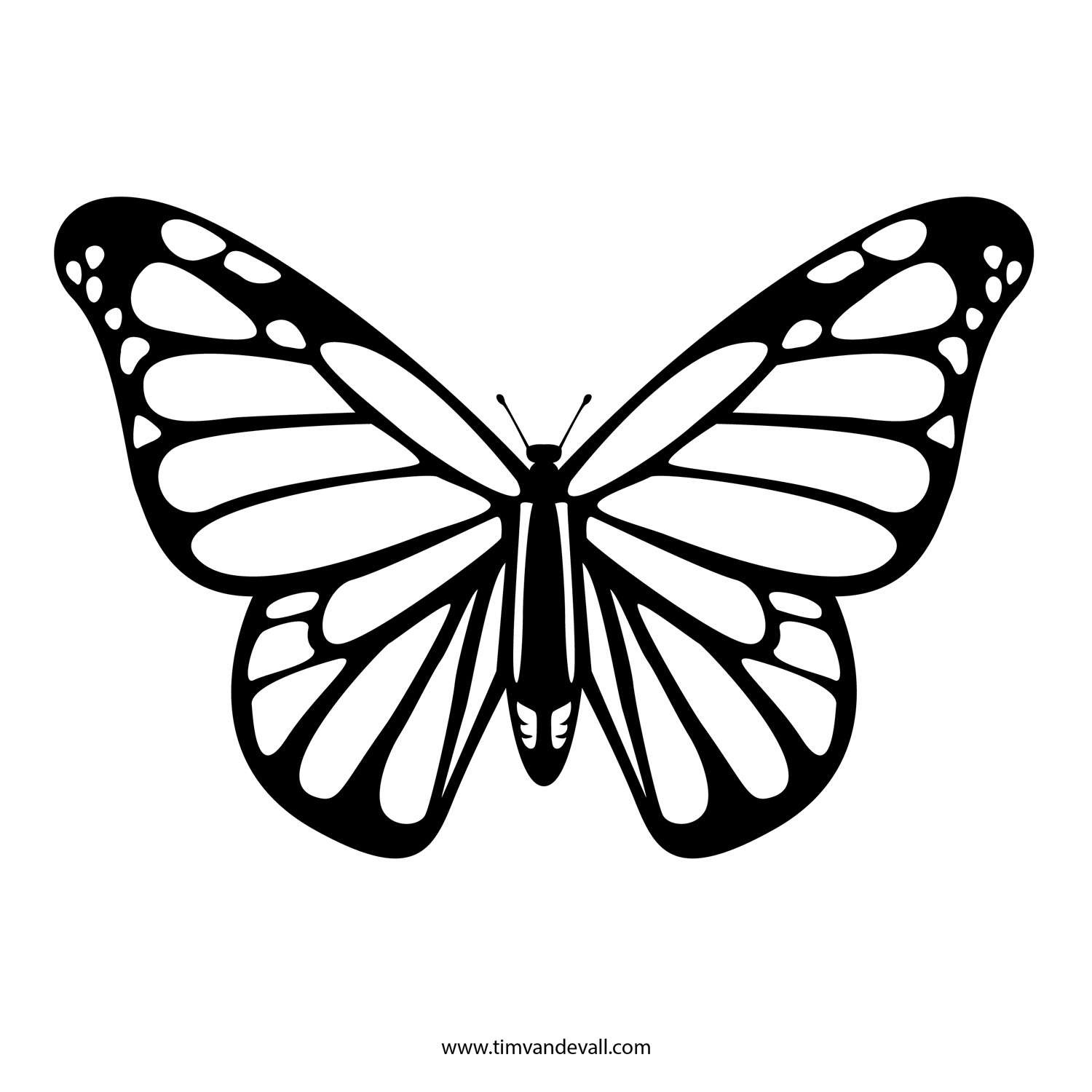 Butterfly Black And White Monarch Butterfly Clipart